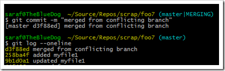 committing the merge shows in the log