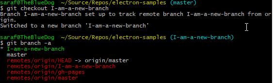git checkout origin branch